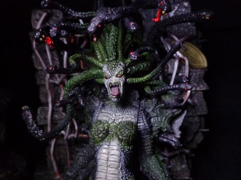Medusa-Profile