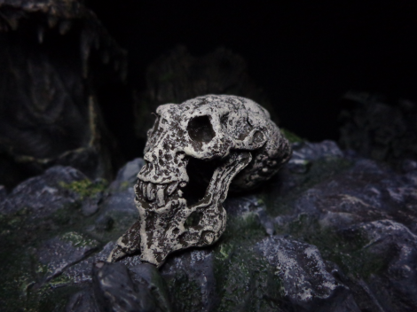 Trophy-BigSkull