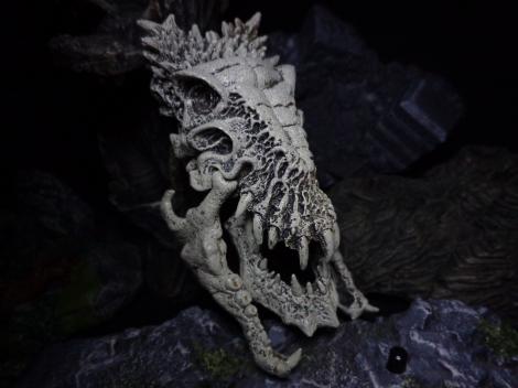Trophy-DinoSkull