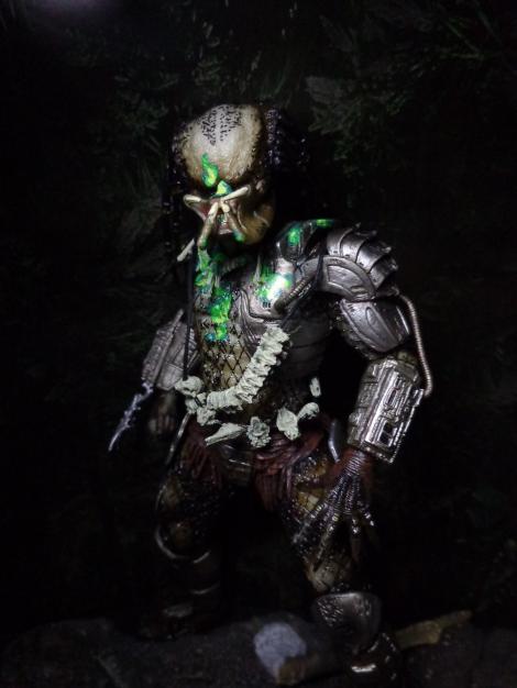 finalpred-predator