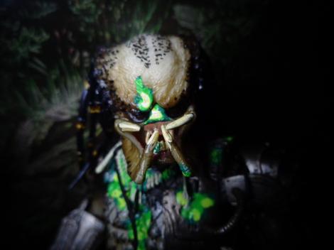 finalpred-predatorface