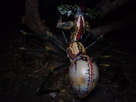 spidergremlin-climbs-tree