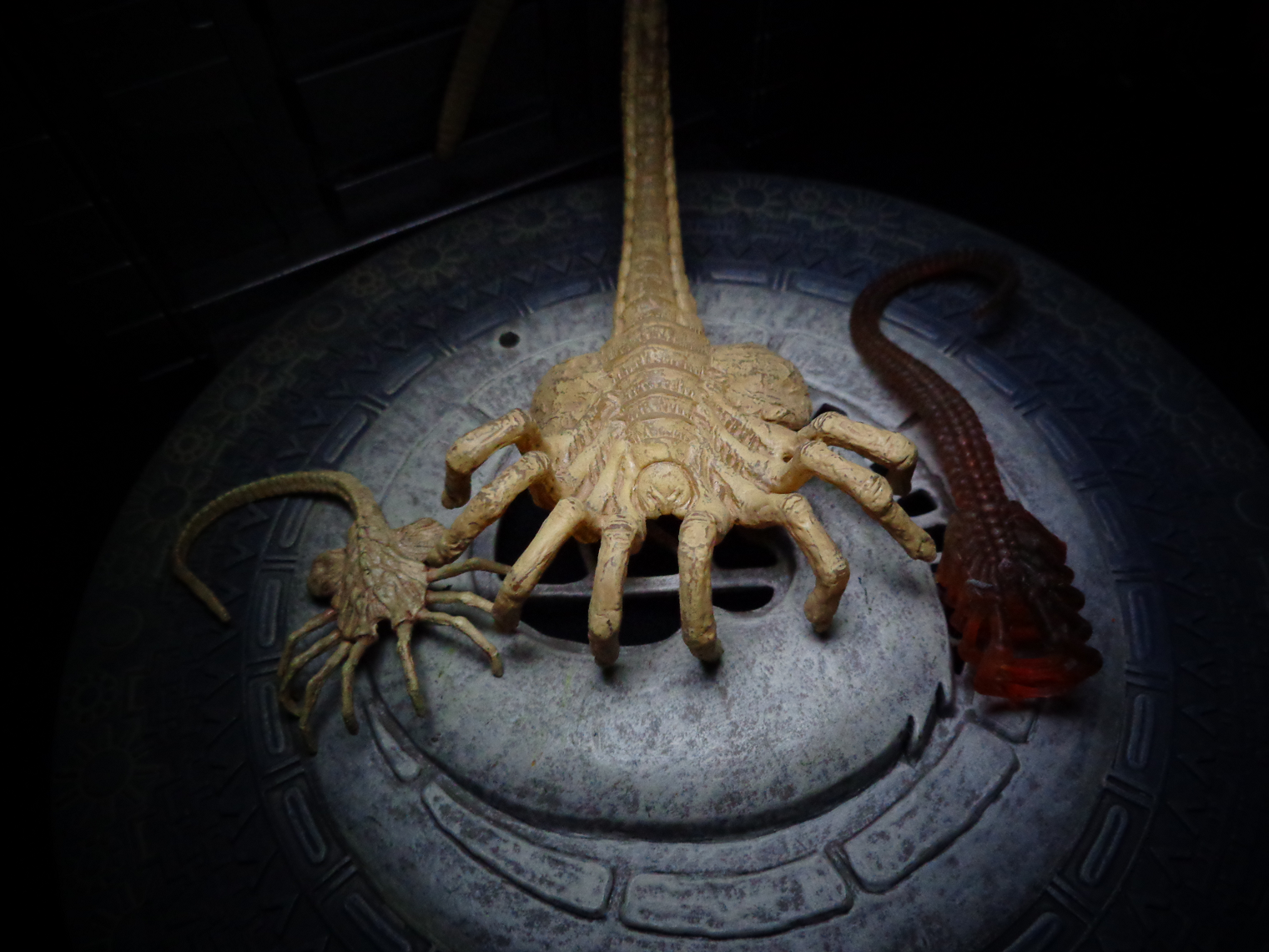 Life In Plastic: TOY REVIEW: Xenomorph Egg & Facehugger