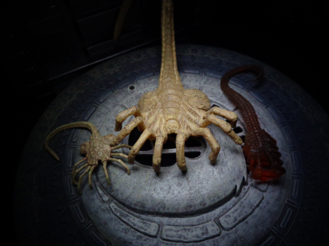 facehugger-comparison