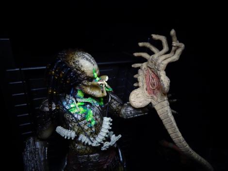 facehugger-predator