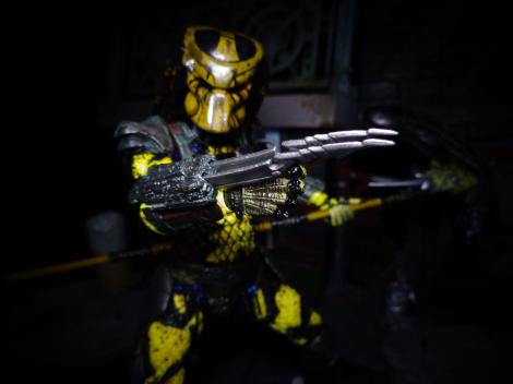 Wasp-Claw