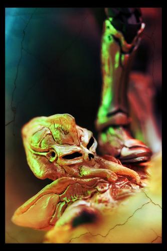 MaskedRiderSkull