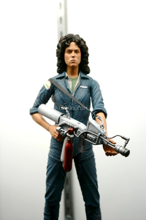 sdcc-ripley