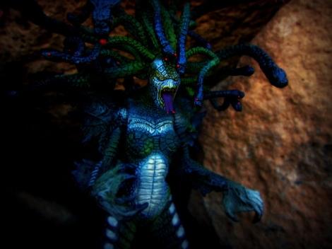 Medusa-GeekCreek
